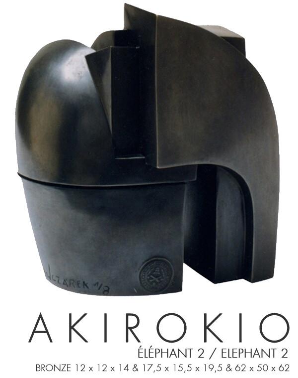 401-Akirokio